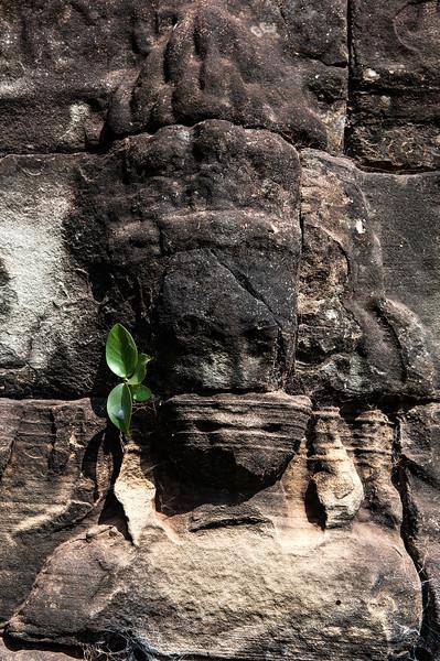 cambodia1_148