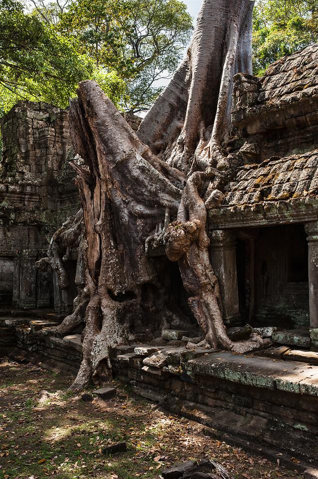 cambodia1_224