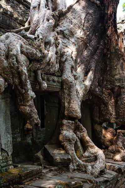 cambodia1_209
