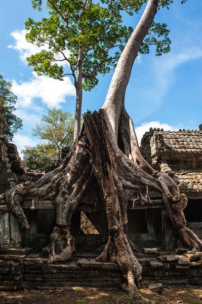 cambodia1_215