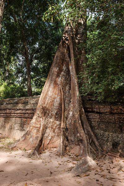 cambodia3_204