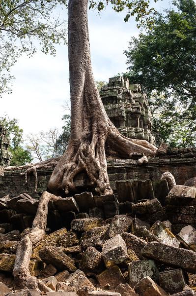 cambodia3_247