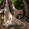 cambodia3_198