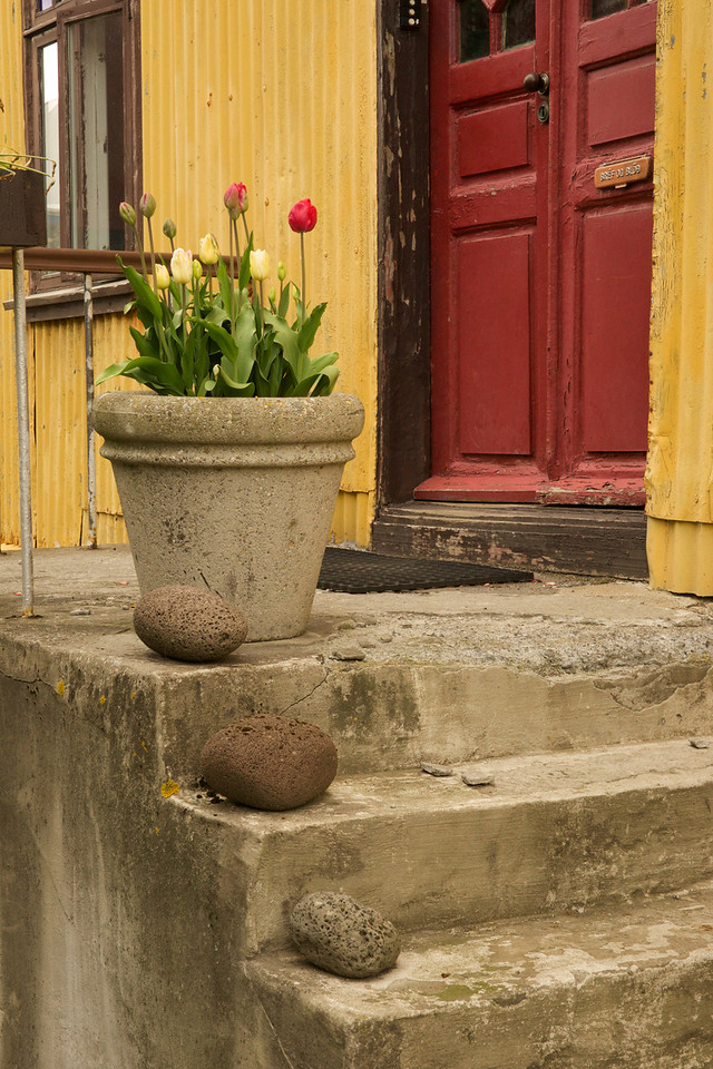 Tulips and Stones on Porch