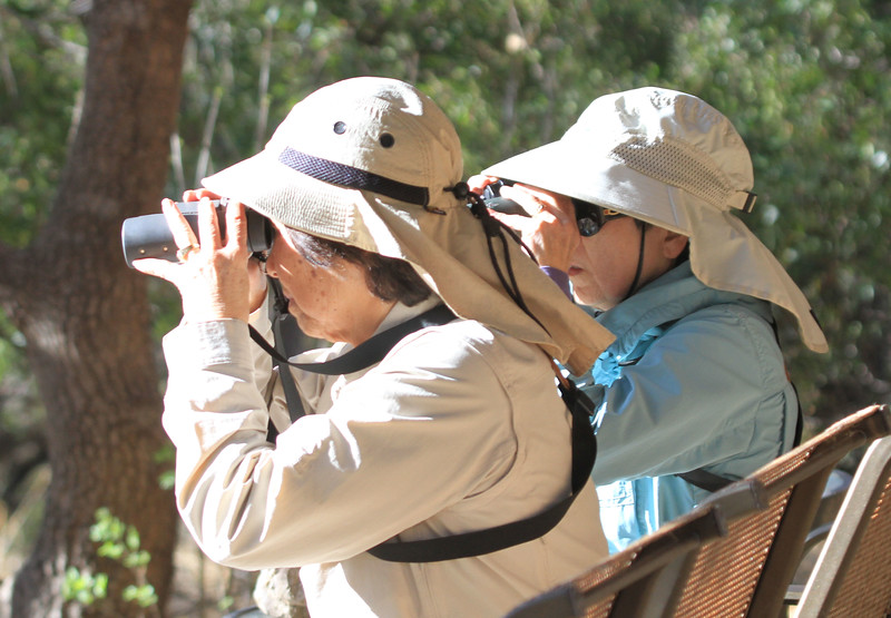 Eunice and Karen looking at something interesting.