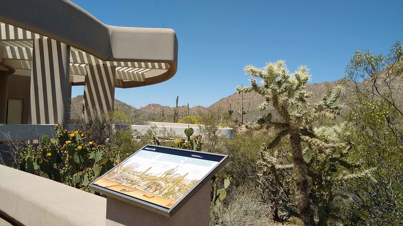 Saguaro National Park (West) Visitors Center