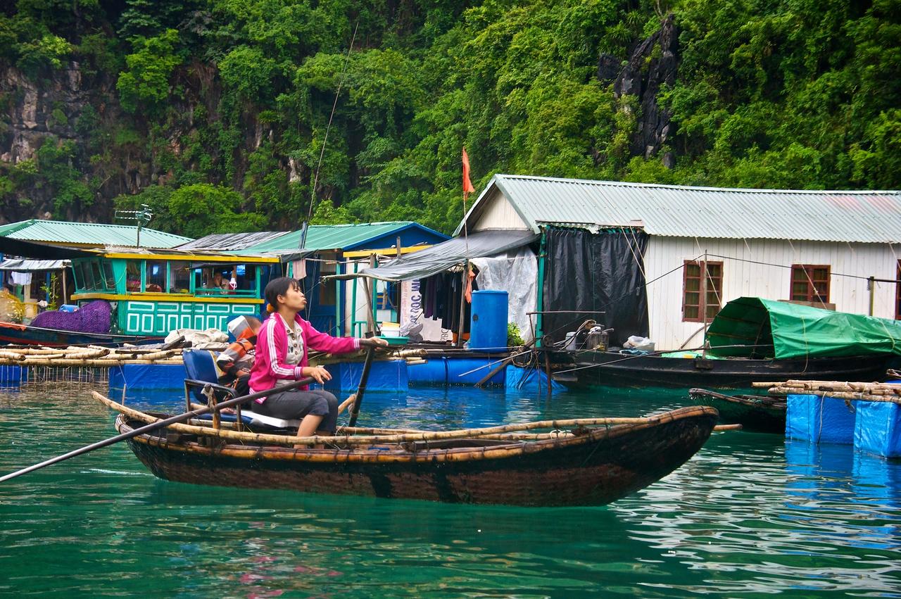 Transport Ha Long Bay