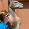 Linda with Kangaroo!