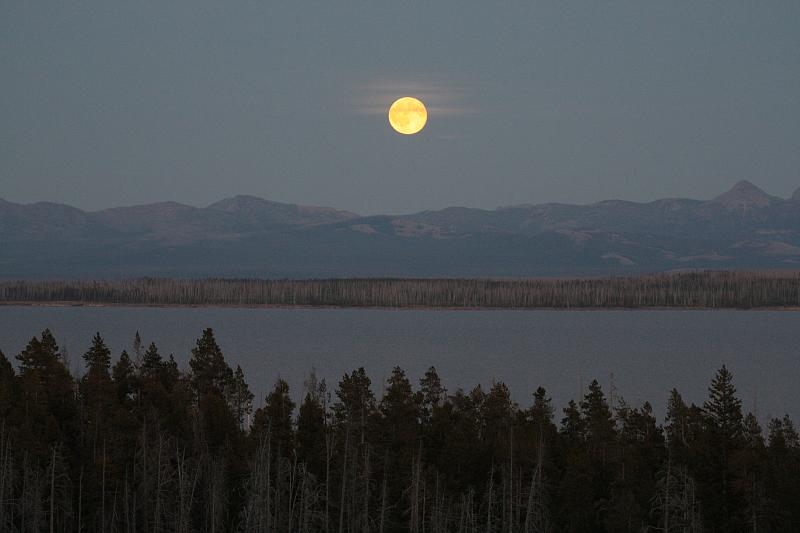 Moon Over Yellowstone 2008