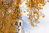 Yellow leaves and old church