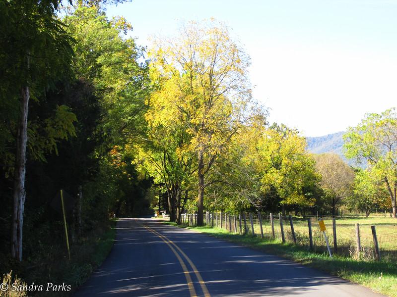 10-11-15: Free Mason Run