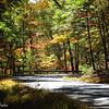 10-11-15: Todd Lake ROad