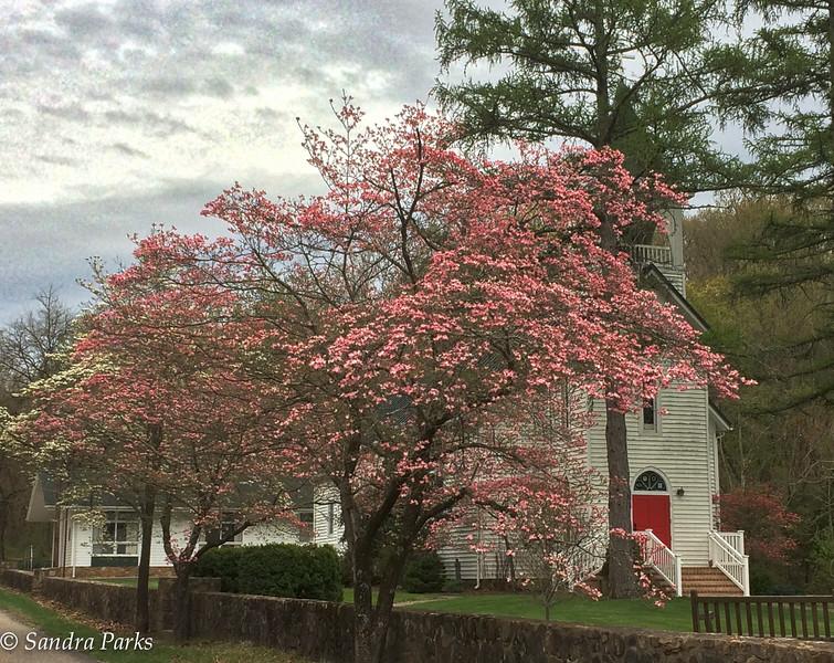 4-25-15: Grace Church