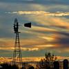 11-11-15: Windmill, Dry RIver