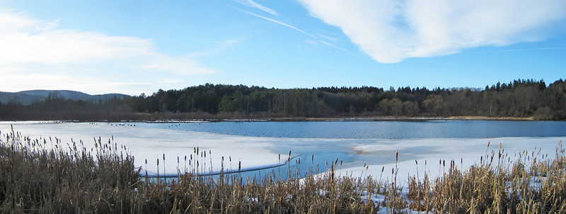mill pond, s egremont MA