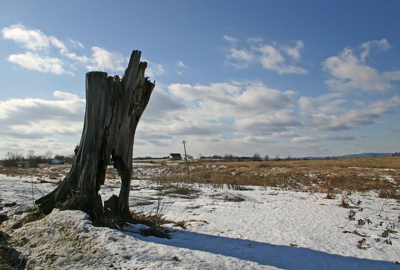 grasslands, ft edward NY