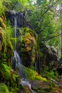 Mossy Waterfall in the Woods