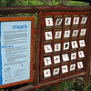Bulgaria's Ecotourism office set up these bird identification guides in the park.