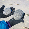 JMR beach pebbles