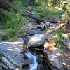 Wuksachi Lodge trail