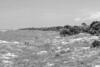Caladesi Island State Park - 3/26/11