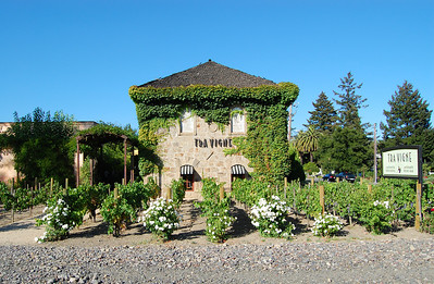 Tra Vigne - the italian restaurant where we ate while visiting Napa Valley.