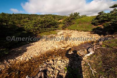 Newfoundland_00520