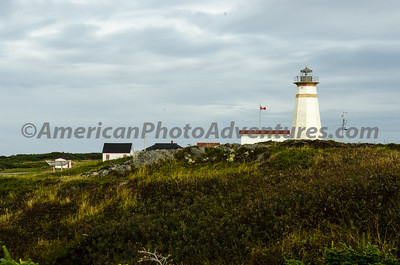 Newfoundland_00223