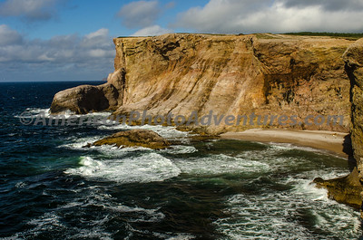 Newfoundland_00416