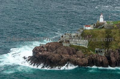 Newfoundland_00983