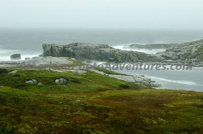 Newfoundland_00018