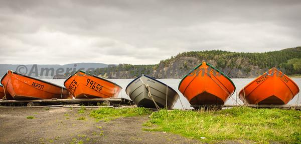 Newfoundland_00589