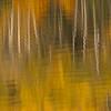 TRCA-11141: Pyramid Lake reflecitons