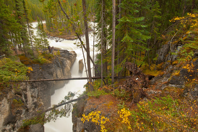 TRCA-11083: Sunwapta Falls