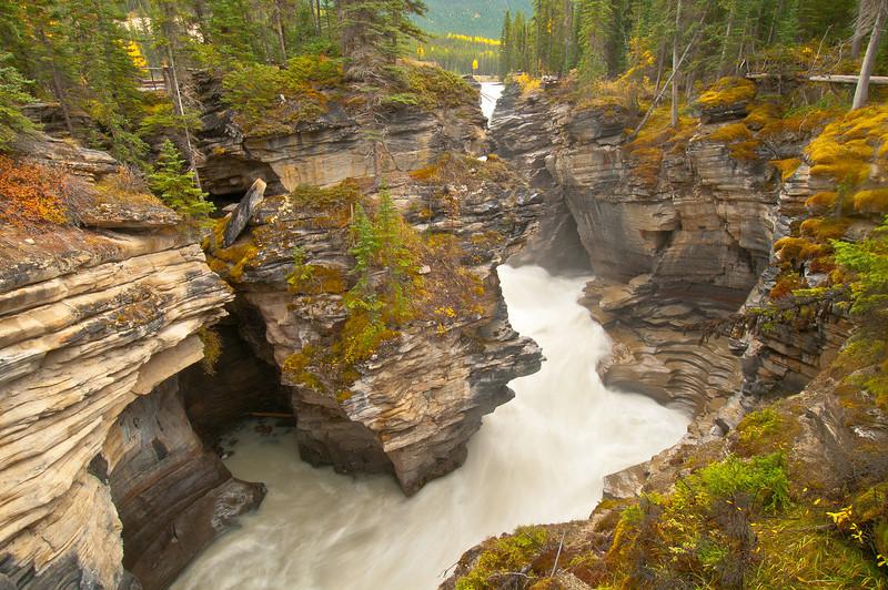 TRCA-11092: Athabasca Canyon
