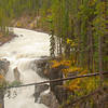 TRCA-11082: Sunwapta Falls in Jasper National Park