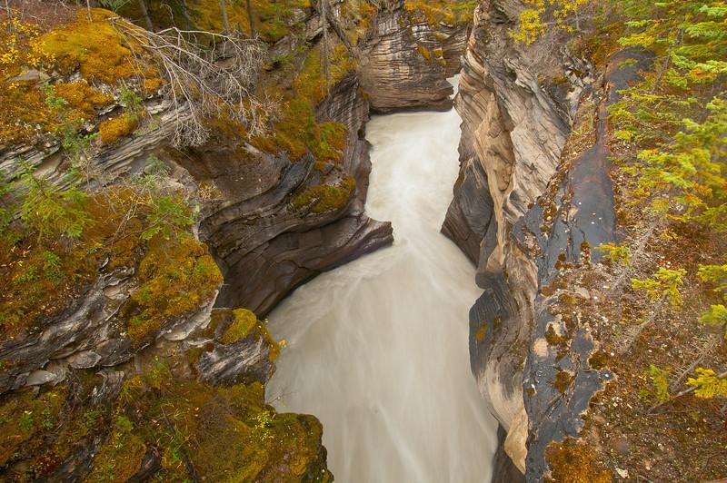 TRCA-11090: Athabasca Canyon