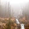 TRCA-11127: Tangle Falls lost in the fog