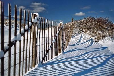 December Fence