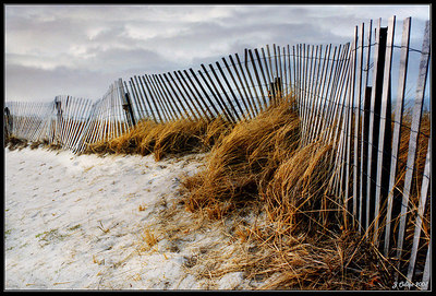 Race Point Beach Winter  Provincetown MA