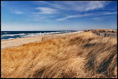 Sandy Neck Beach Cape Cod Bay