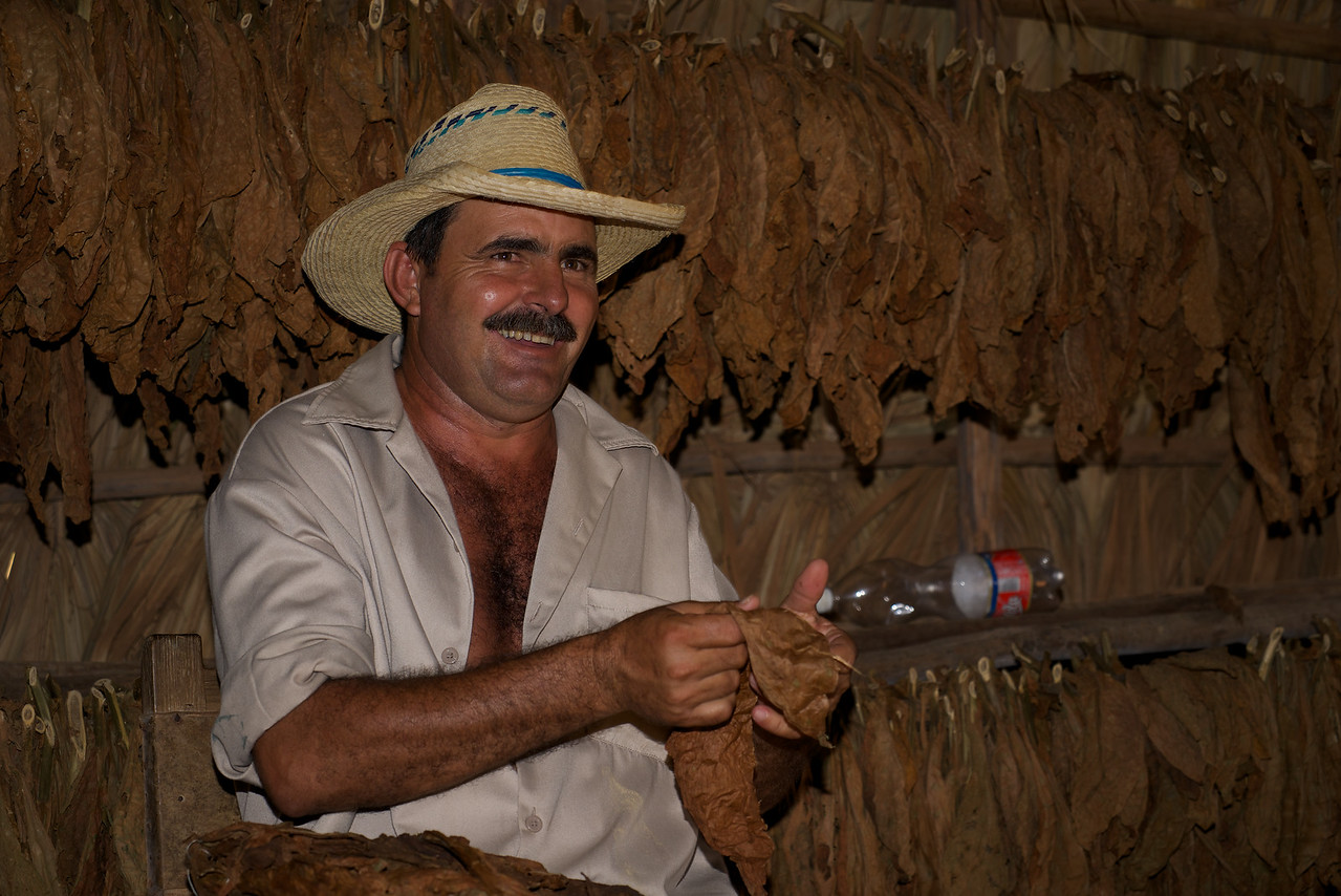Proprietor of Tobacco drying room