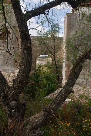 San Miguel de Allende-Landscapes