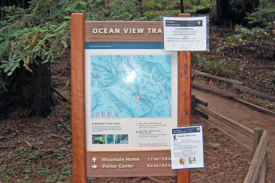 We hiked along the Ocean View Trail almost all the way to the top, but never saw the ocean view.