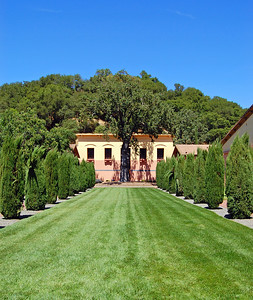 Wonderful landscaping at the Clos Pegase winery in Napa Valley.
