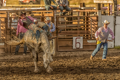 Cheney Rodeo 2018--2