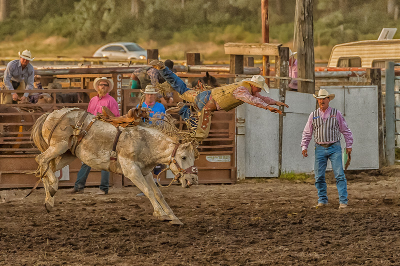 Cheney Rodeo 2018-