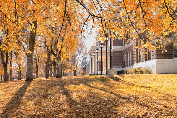 Showalter Hall-