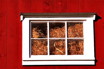 Window Full of Hay :-)
