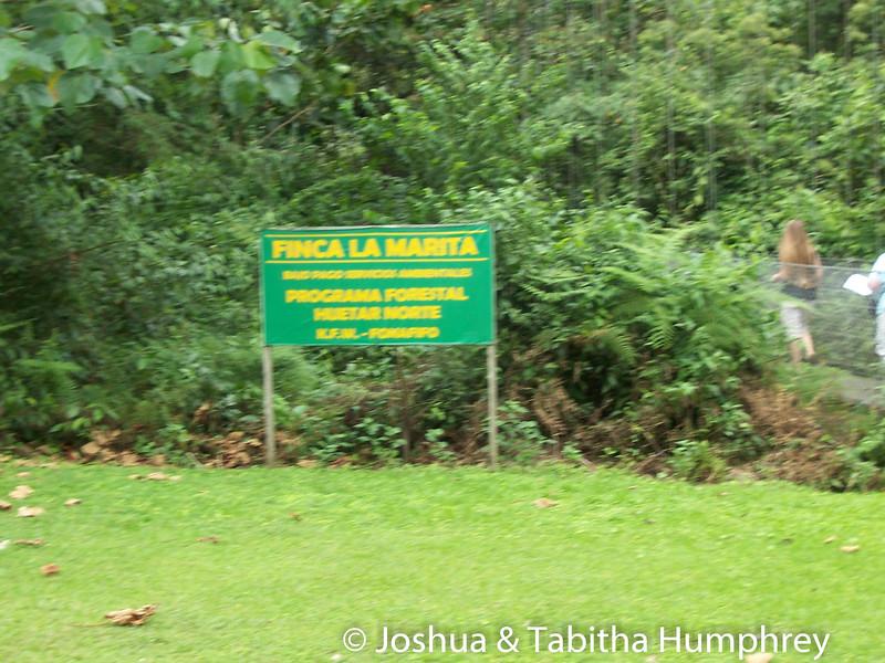 Hanging Bridges tour - Arenal Volcano National Park